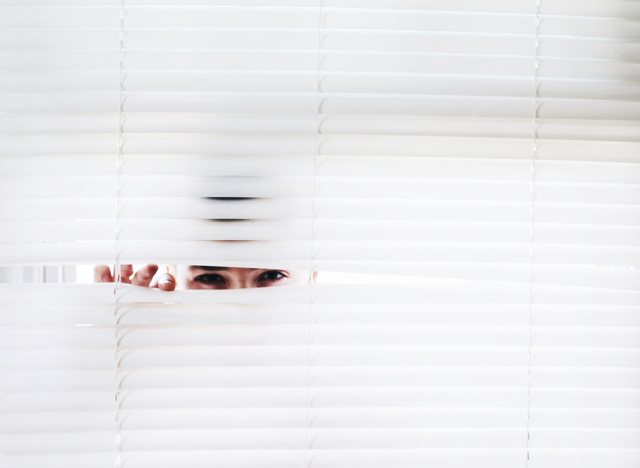 Spy on your competitors' campaigns and know what is working in your niche. Image: Noelle Otto, license under Pexels, Pexels.